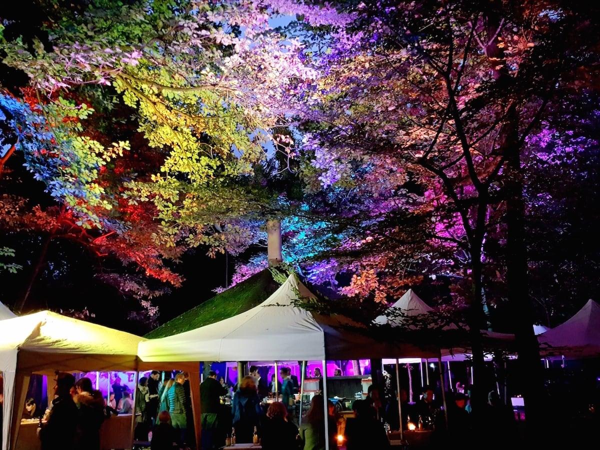 Aufwändige Beleuchtung einer open Air Hochzeit in Bonn Duisdorf