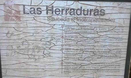 """Cartel petroglifo """"Las Herraduras"""""""