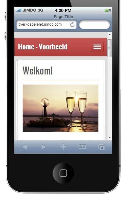 mobiele versie website