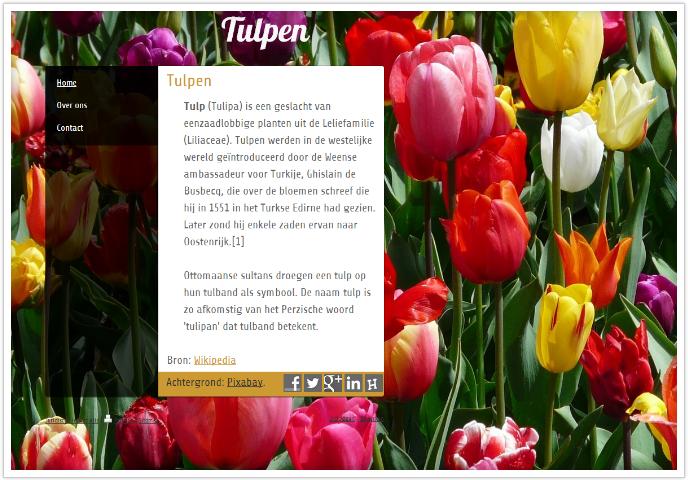 website achtergrond