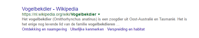 Voorbeeld van een website in de zoekresultaten.