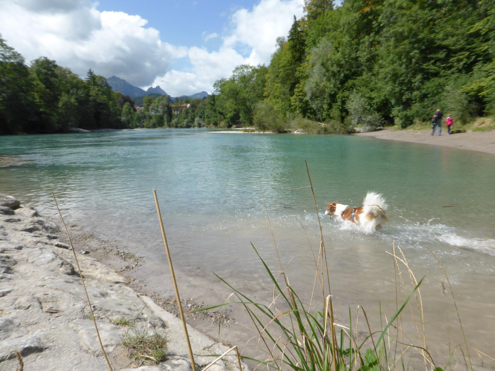und noch einmal baden, diesmal im Lech.