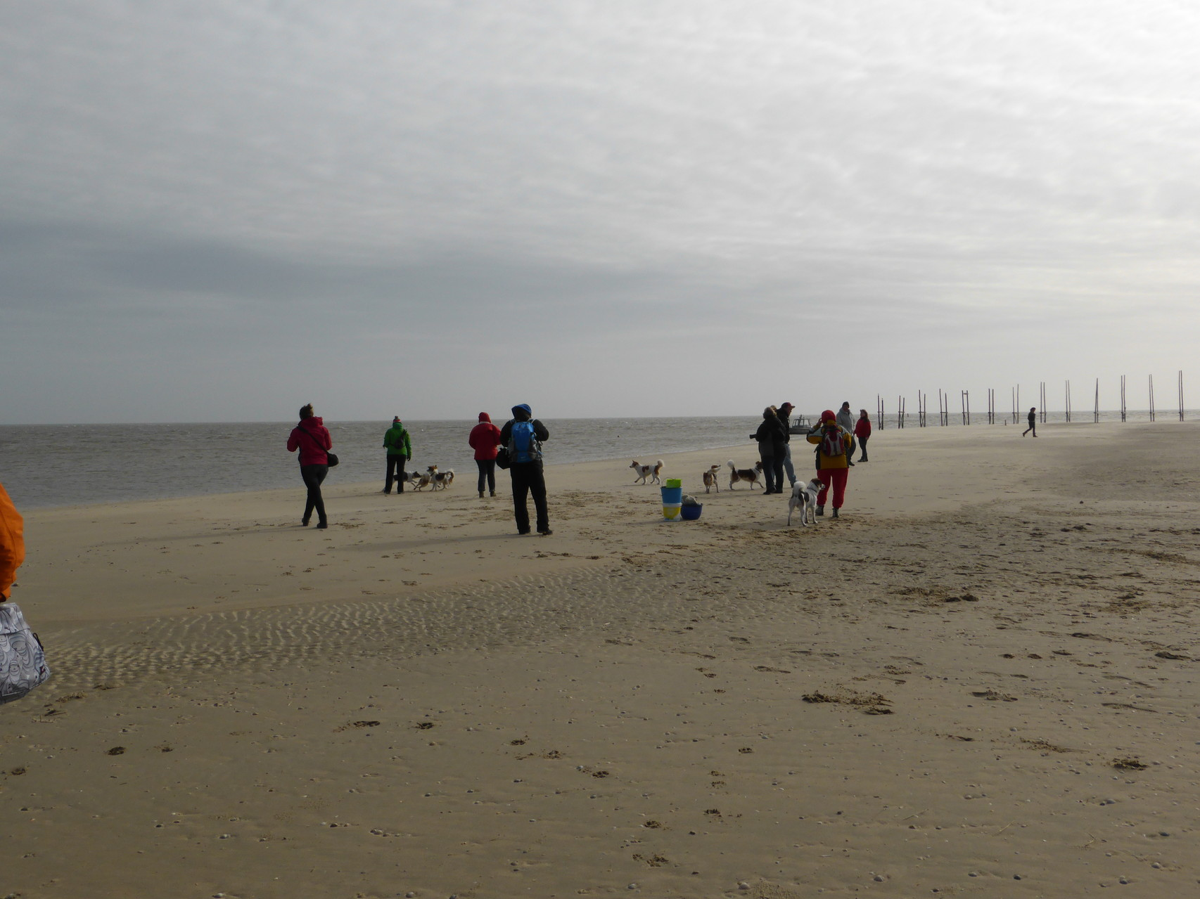 Kiesel-Treffen am Strand