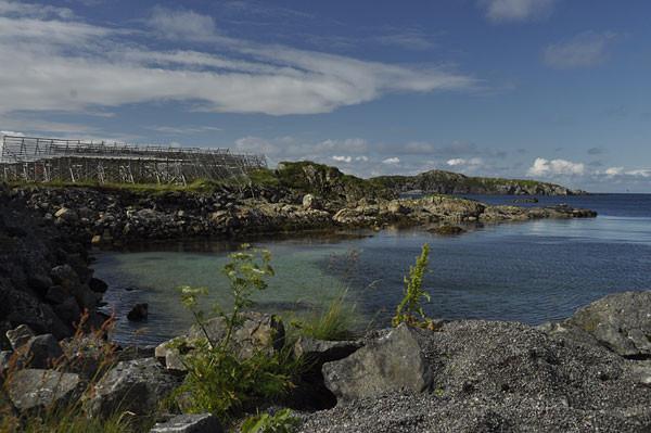 Küste bei Stø