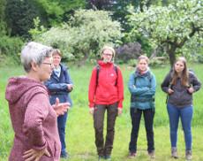 Karin Rietman (links) erläuterte den Besuchern der AG Bienen und AG Botanik die schöne Obstwiese bei Gievenbeck und den Streuobstwiesenschutz in Münster