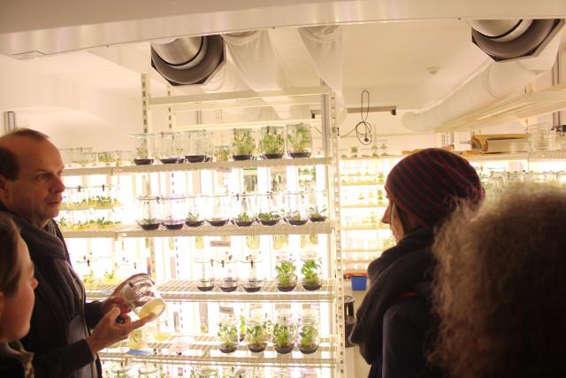 Prof. Dr. Dirk Prüfer (links) führte die Besucher der AG Botanik durch die Forschungslaboratorien des Institutes für Biowissenschaften Bild: Thomas Hövelmann