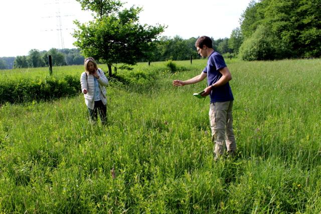 Freiwillige der AG Botanik beim Auszählen der blühenden Exemplare des Breitblättrigen Knabenkrautes (Foto: Thomas Hövelmann)