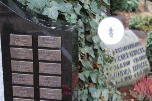 Ein Hornissenbild schmückt das Grab von Konrad Schmidt auf dem Zentralfriedhof Münster (Foto: Thomas Hövelmann)