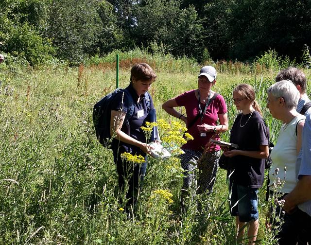 Die beiden Exkursionsleiterinnen Dr. Berit Philipp (links) und Britta Ladner (2. von links) stellten die Blütenökologie im Landschaftspark Mecklenbeck vor Bild: Claudia Rüther