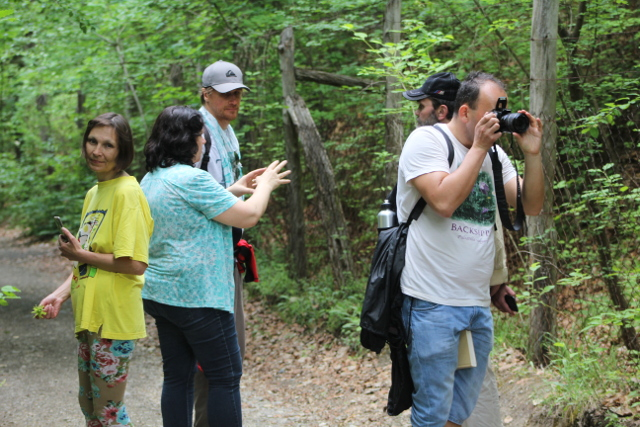 Im Bükk-Nationalpark diskutierten die europäischen Botaniker u.a. über den Schutz heimischer Orchideen-Arten wie den Frauenschuh