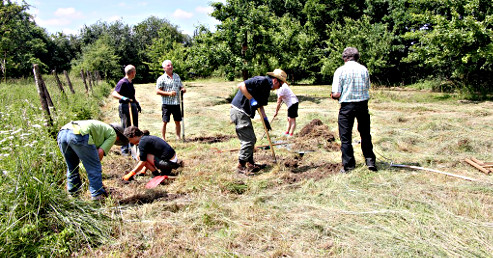 Arbeiten auf der Streuobstwiese - Entfernen der Gräser aus einer kleinen Fläche (Foto: Viola Hütte)