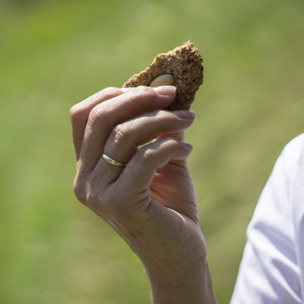 quendelkekse – kekse gegen die vergesslichkeit