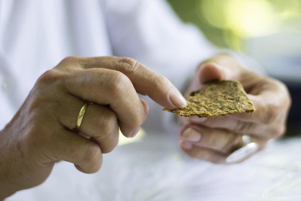leinsamen-buchweizen-brennnessel-cracker – glutenfrei – brotersatz