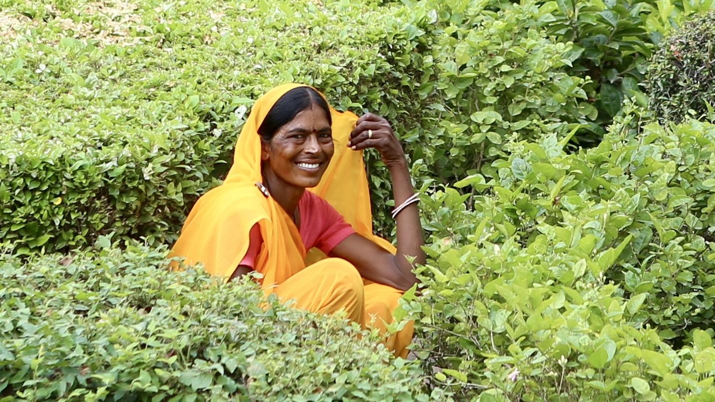 Amer, India
