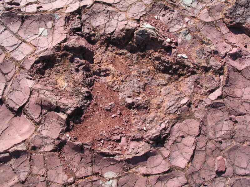 Fußabdruck eines Dinos