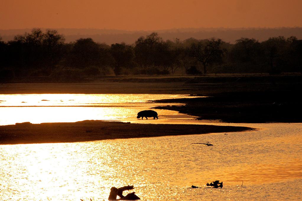 TRAMONTO AL LUANGWA NATIONAL PARK  - ZAMBIA -