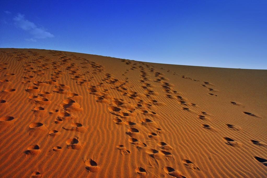 DESERTO DEL NAMIB  - NAMIBIA -