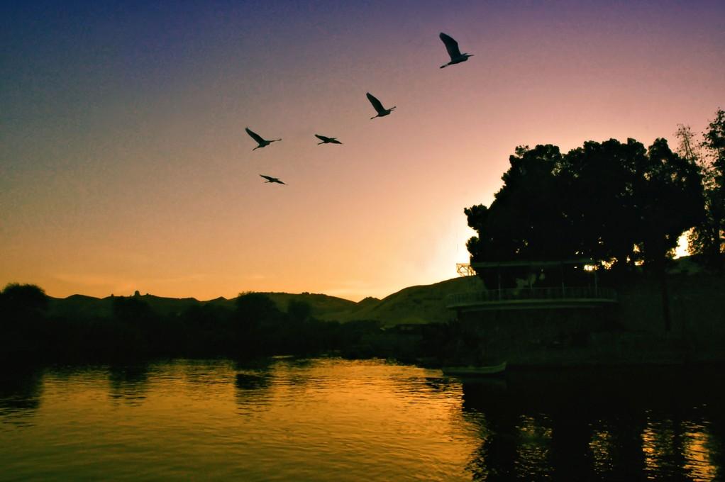 SULLE RIVE DEL NILO  - EGITTO  -