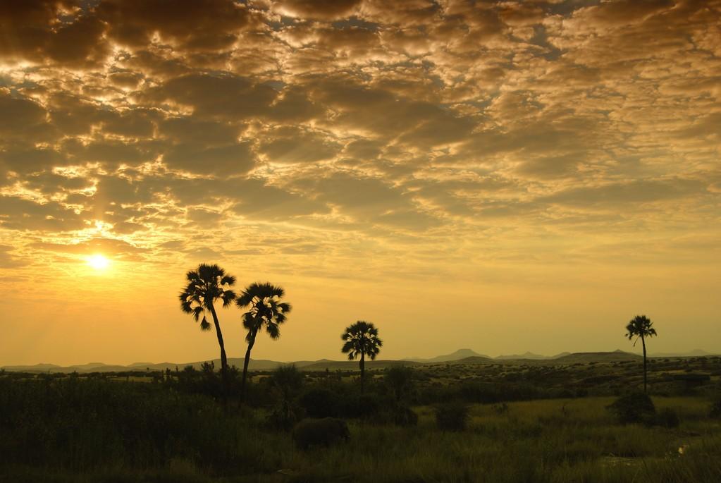 PAESAGGIO AFRICANO  - NAMIBIA -