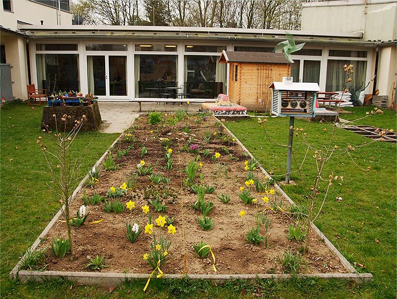 Frühling im Schulgarten