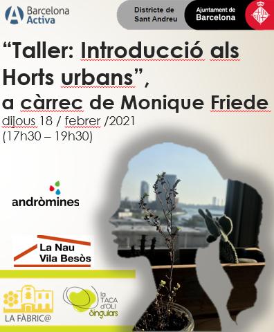 Taller on line: Introducció als horts urbans