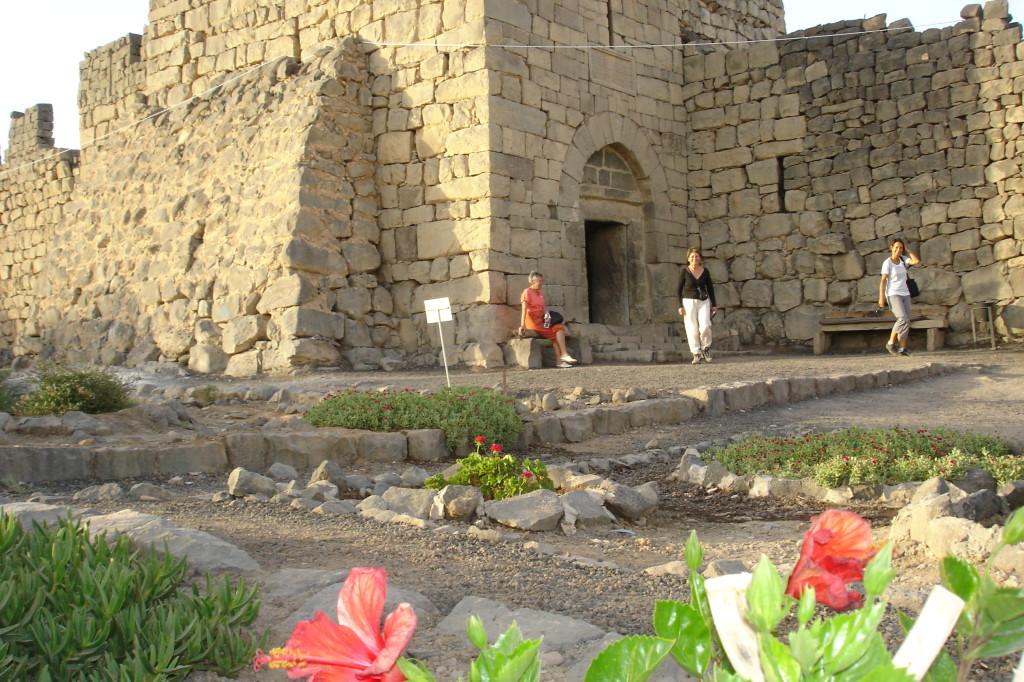 Al Azraq, fleurs à l'entrée