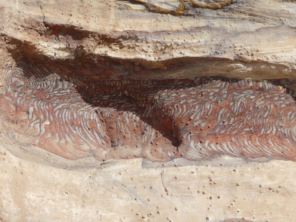 Détail de roches