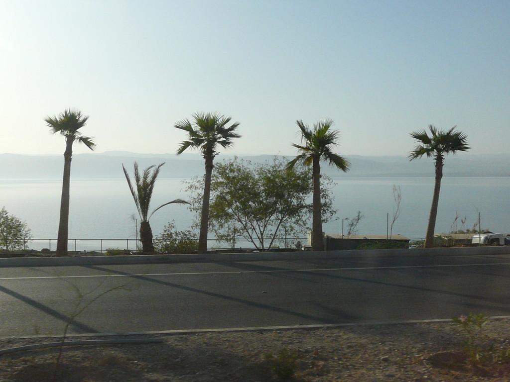 Sur la route du bord de la mer morte