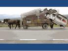 Moteur de camion d'un cheval