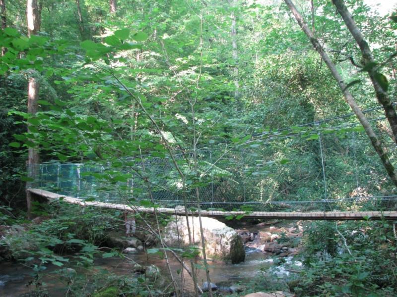le pont suspendu d'Arifat (81)