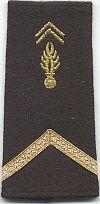 Gendarmerie, Gendarme 1e klasse