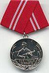 Combatgroep werknemers, medaille 15 jaar trouwe dienst