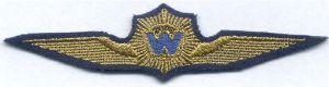 Dienst Luchtvaart, embleem waarnemer Waterpolitie