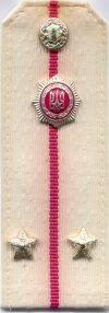 Militia, inspecteur, tot 1989