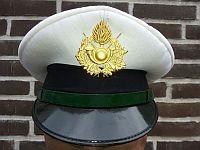 Gemeentepolitie Fiumicino