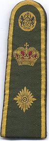 Plaatsvervangend politiechef