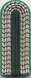 Volkspolitie, 1980 - 1989, bovenwachtmeester