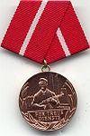 Combatgroep werknemers, medaille 20 jaar trouwe dienst