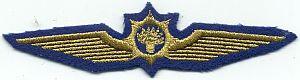 Dienst Luchtvaart, stoffen embleem piloot
