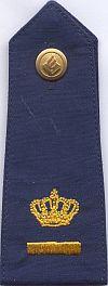 Hoofdinspecteur, 2006 - heden