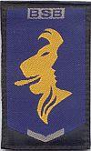 Brigade Speciale Beveiligingsopdrachten