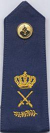 Hoofdcommissaris, 2006 - heden