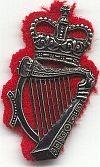 Politie Ulster, petembleem
