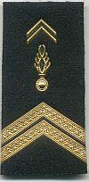 Gendarmerie, brigadier