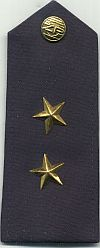 Nationale politie, na 1989, inspecteur