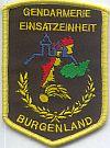 Arrestatieteam Burgenland