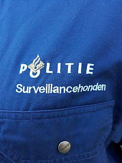 Team Surveillancehonden