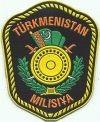 Nationale politie, militia