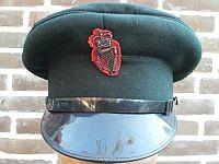 Politie Ulster