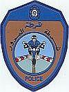 Motorpolitie